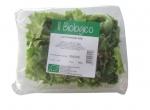 Il_Biologico_Lattughino_Bio_100g_Fronte copia
